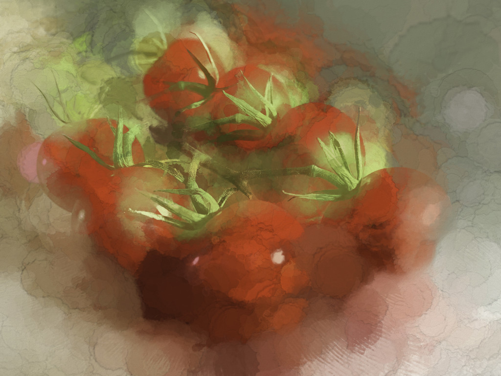 Tomatoes by pamknowler
