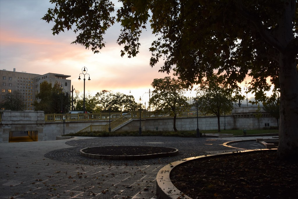 The evening slowly descends to the park by kork