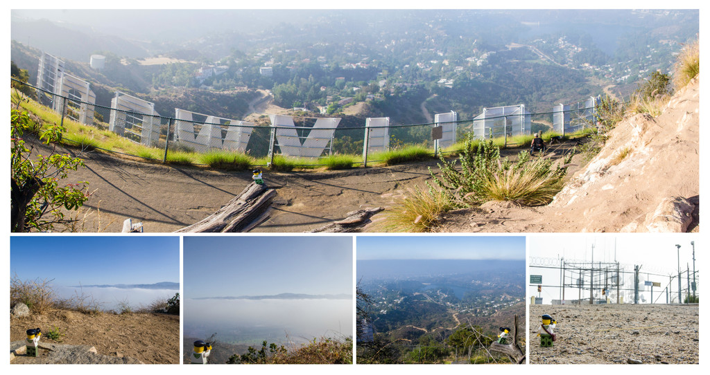 (Day 264) - Behind the Hollywood Sign by cjphoto