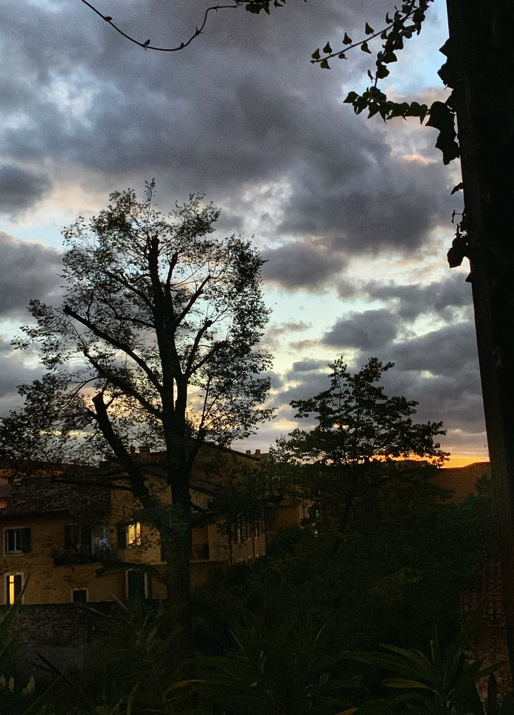 Sunset after the rain by caterina