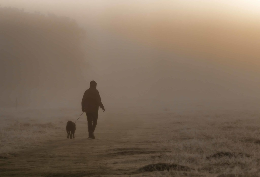 man and dog in fog  by shepherdmanswife