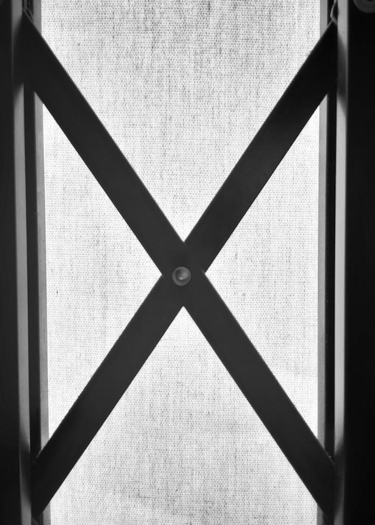 X by salza