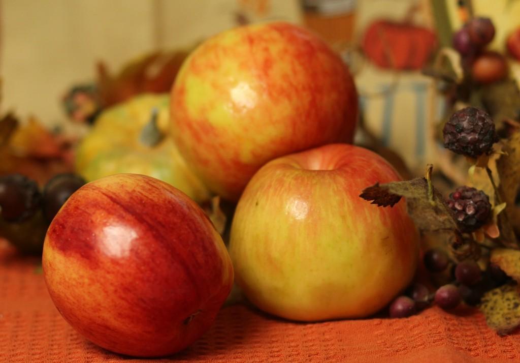 Fruit by judyc57