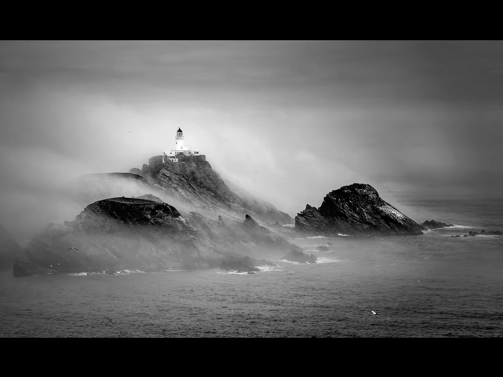 Guarding the Rocks by ellida