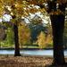 Green Lake Morning