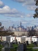 8th Nov 2019 - NYC skyline