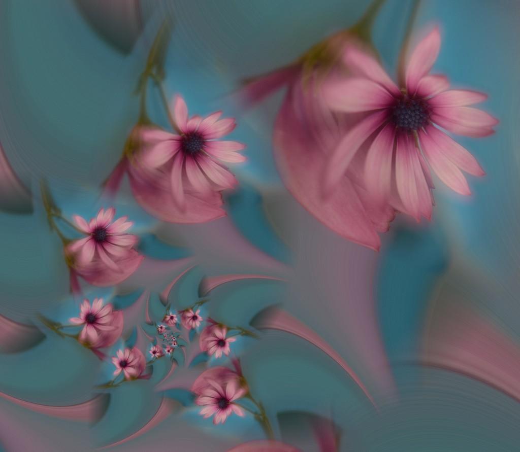 Daisies galore....... by ziggy77