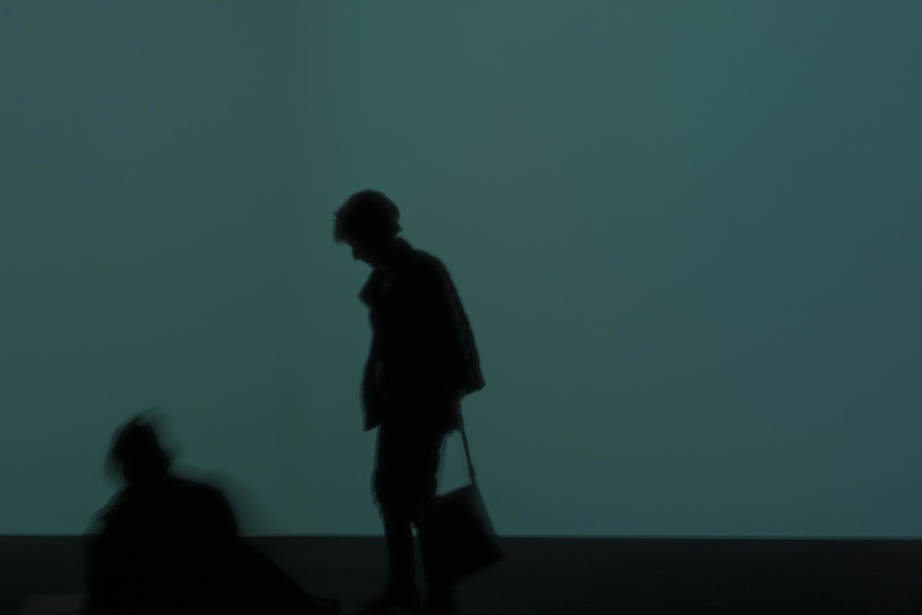 Chinese shadows in Paris by domenicododaro
