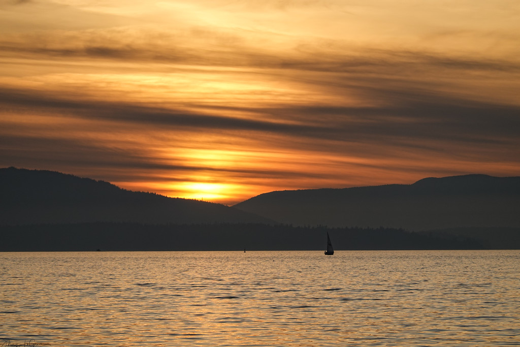 ~Sunset~ by crowfan