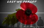 10th Nov 2019 - We will remember them