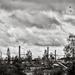 Industrial Landscape 2...
