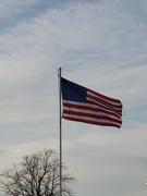 11th Nov 2019 - Veterans Day