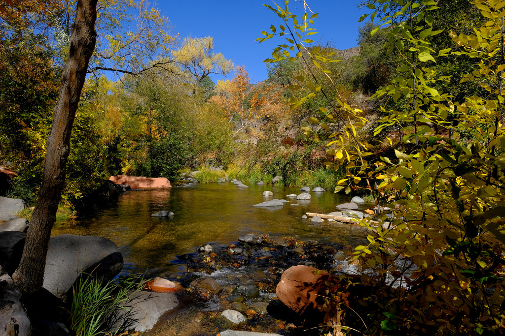 Oak Creek Canyon  by tosee