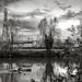 Industrial Landscape 3...