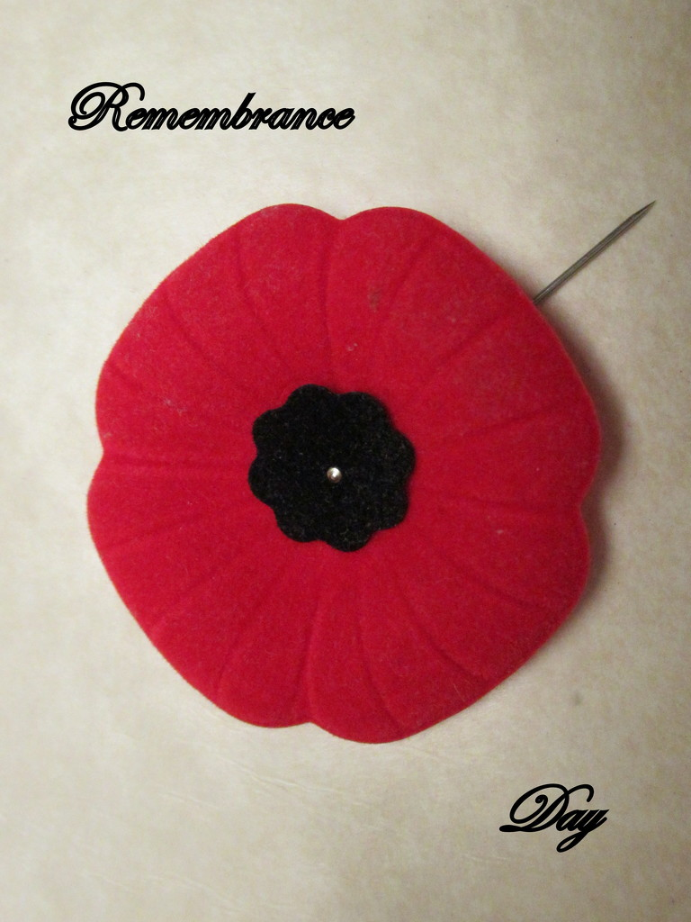 Lest we forget by bruni