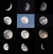 12th Nov 2019 - The Moon Cycle