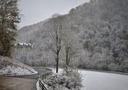 12th Nov 2019 - First Snow