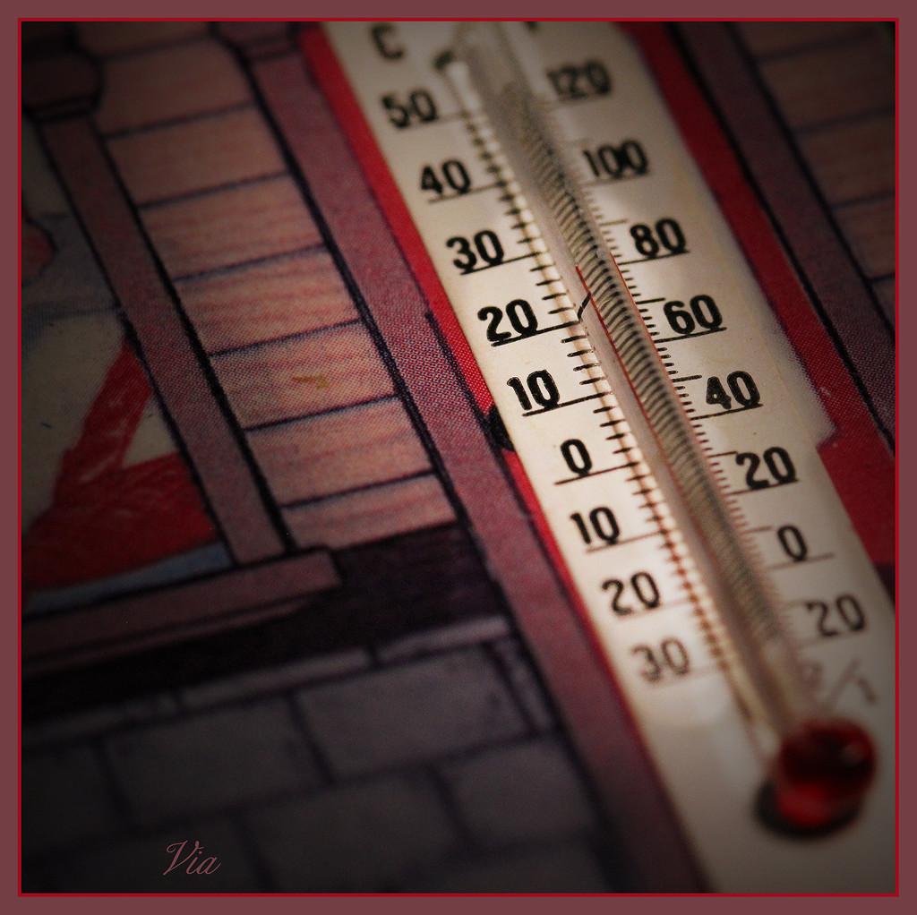 Ideal temperature    by sdutoit