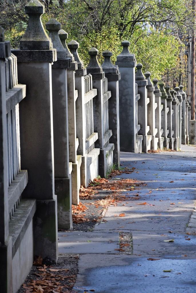 columnar fence.... by kork