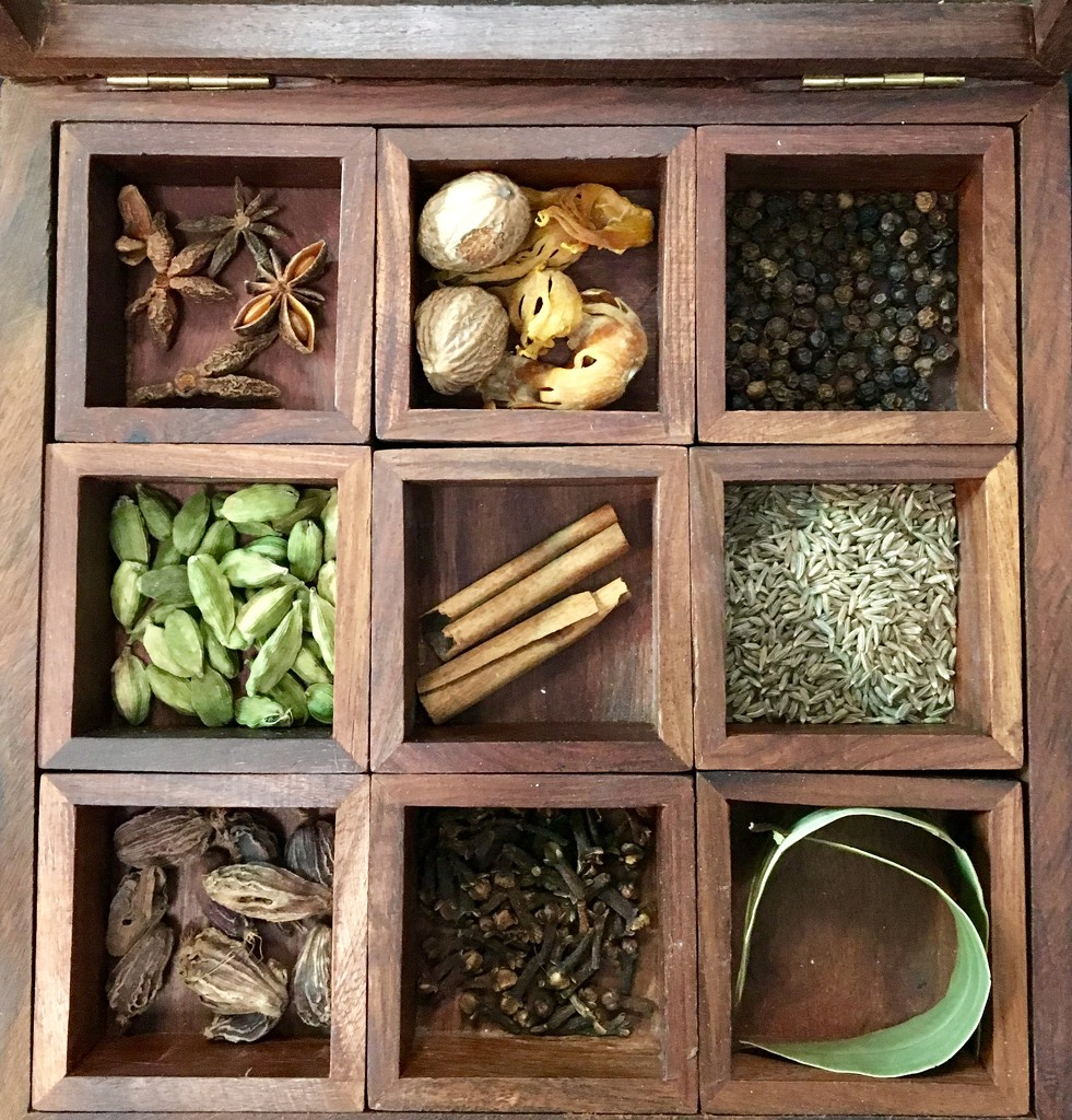 Indian spice box by momamo