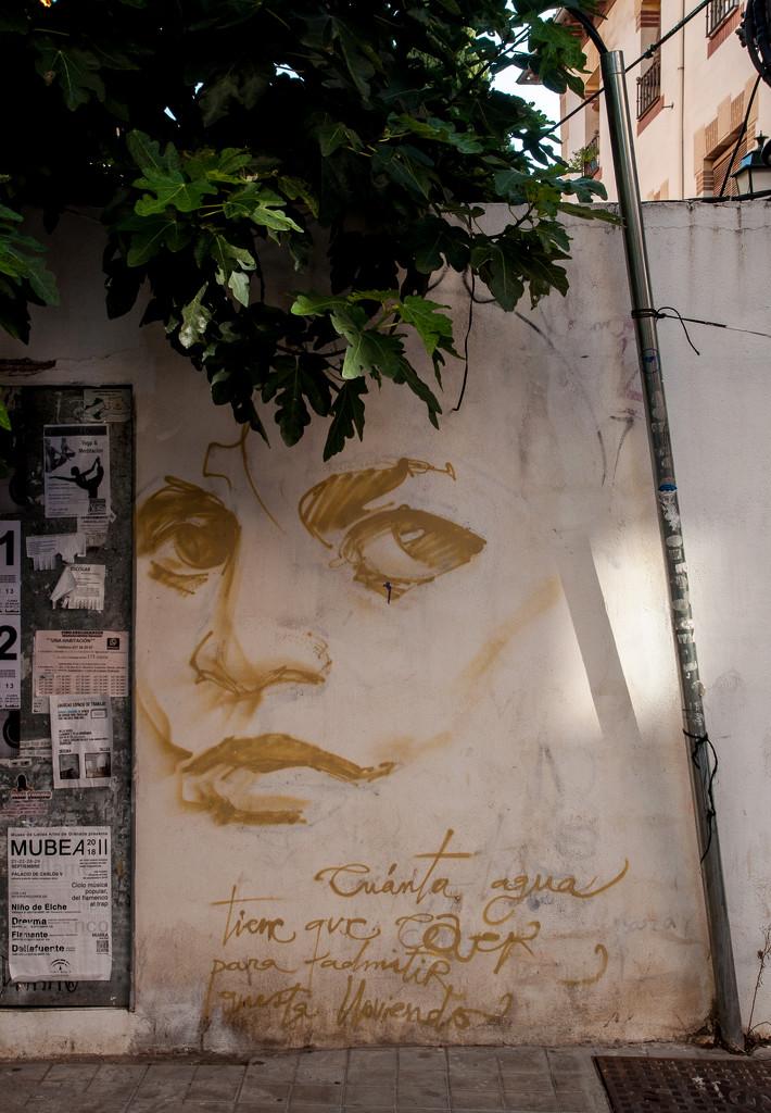 Granada street - across the road  by brigette