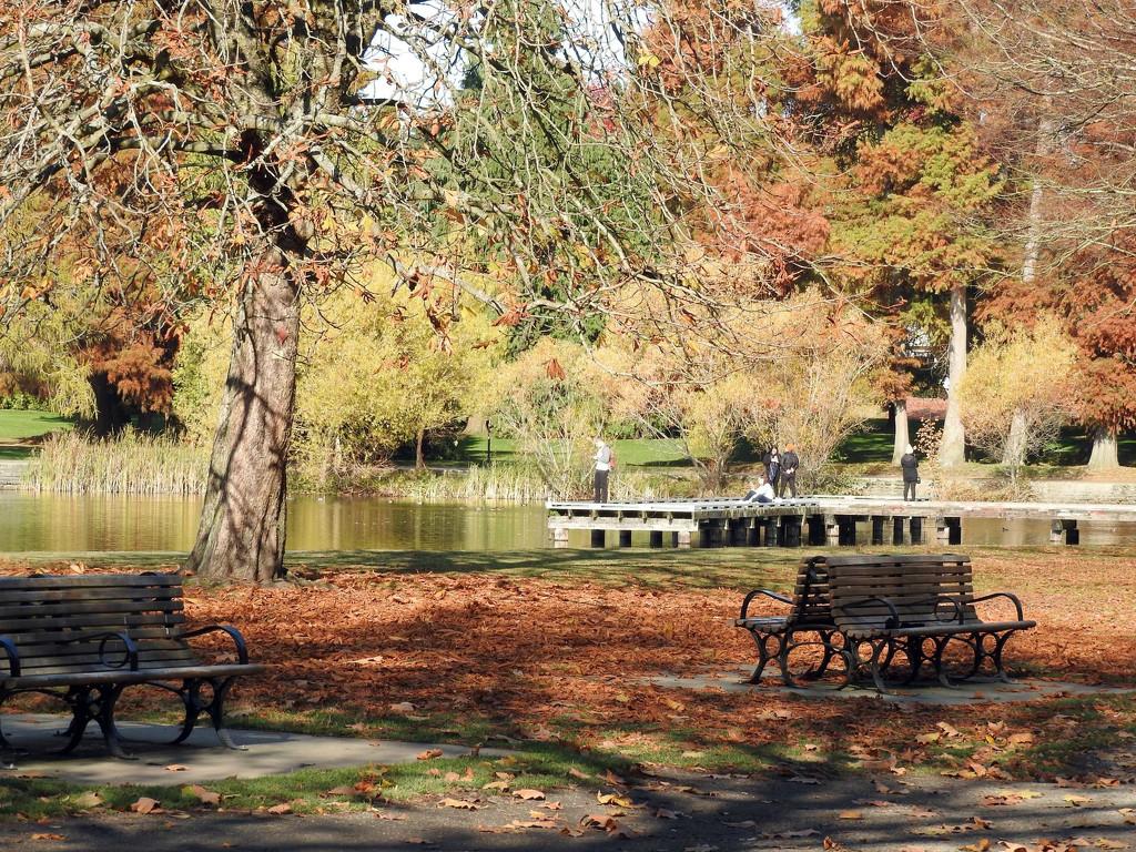 Green Lake by seattlite