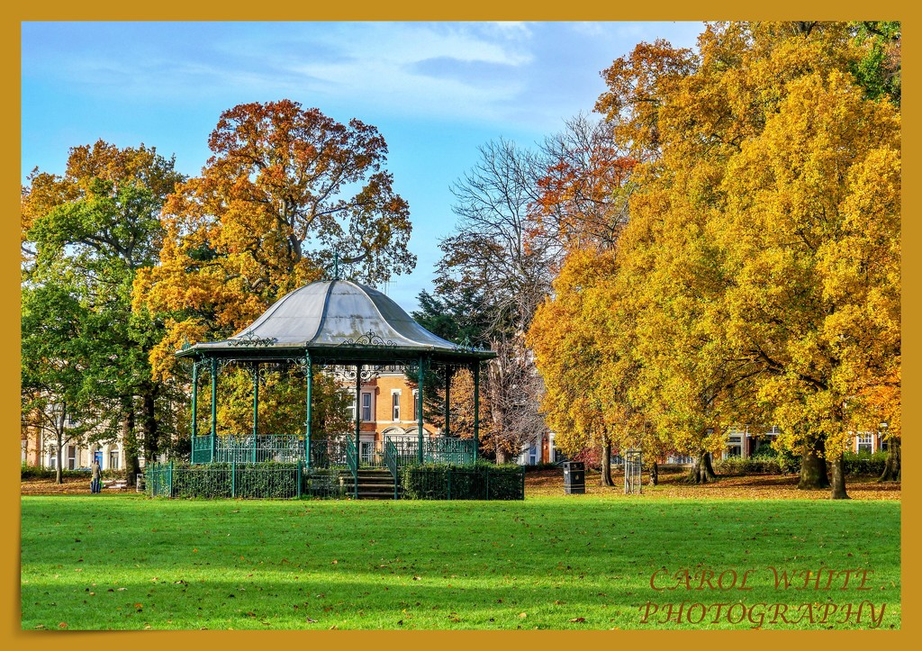 Bandstand In The Park by carolmw