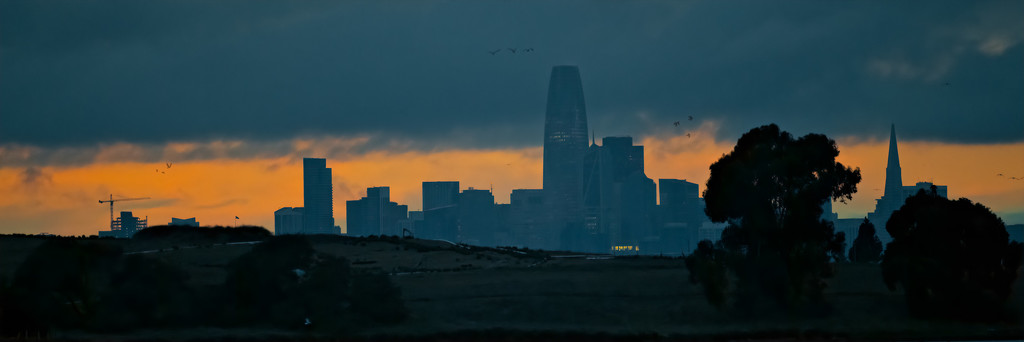 San Francisco Sunset Skyline by mikegifford