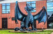 16th Nov 2019 - The dragons den