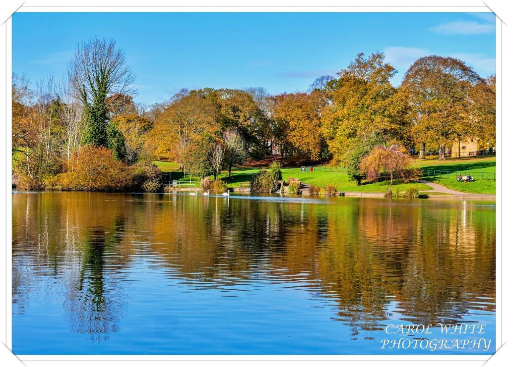 Lovely Lakeside Morning by carolmw