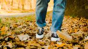 16th Nov 2019 - Fall Walking