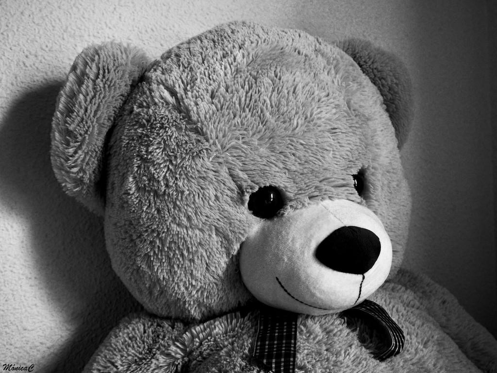 Teddy by monicac
