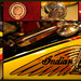 Indian Motorcycle Collage