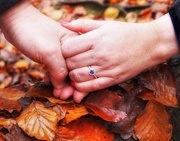 17th Nov 2019 - Engaged!