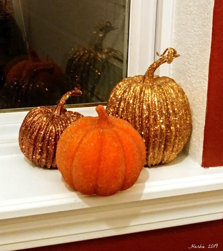 Wild Pumpkins by harbie