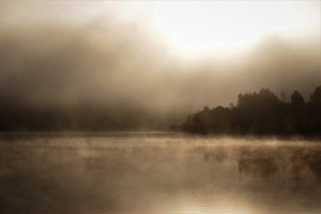 fog on Loch Lomond by christophercox