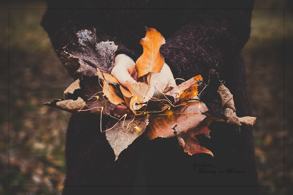 Leaves of an Unfortunate Fall by lyndemc