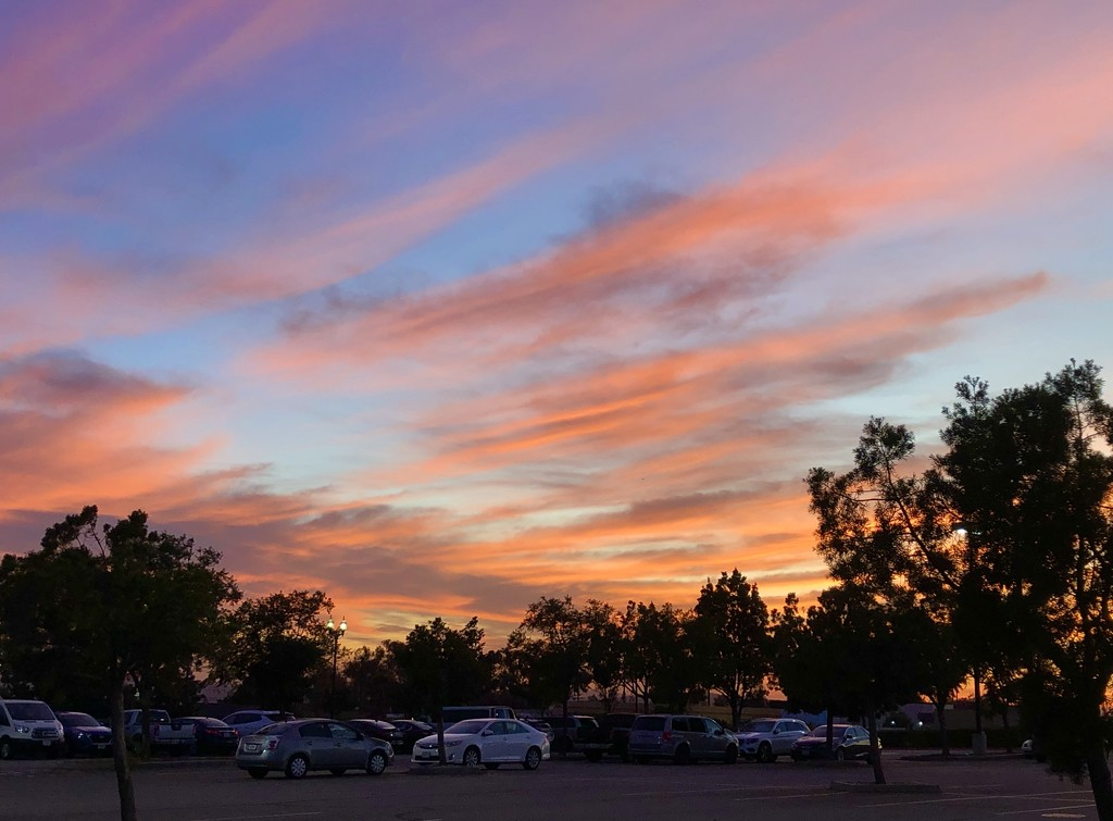 Parking Lot Sunset by loweygrace