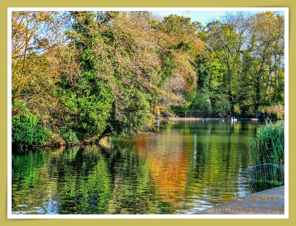 Another Lake View by carolmw