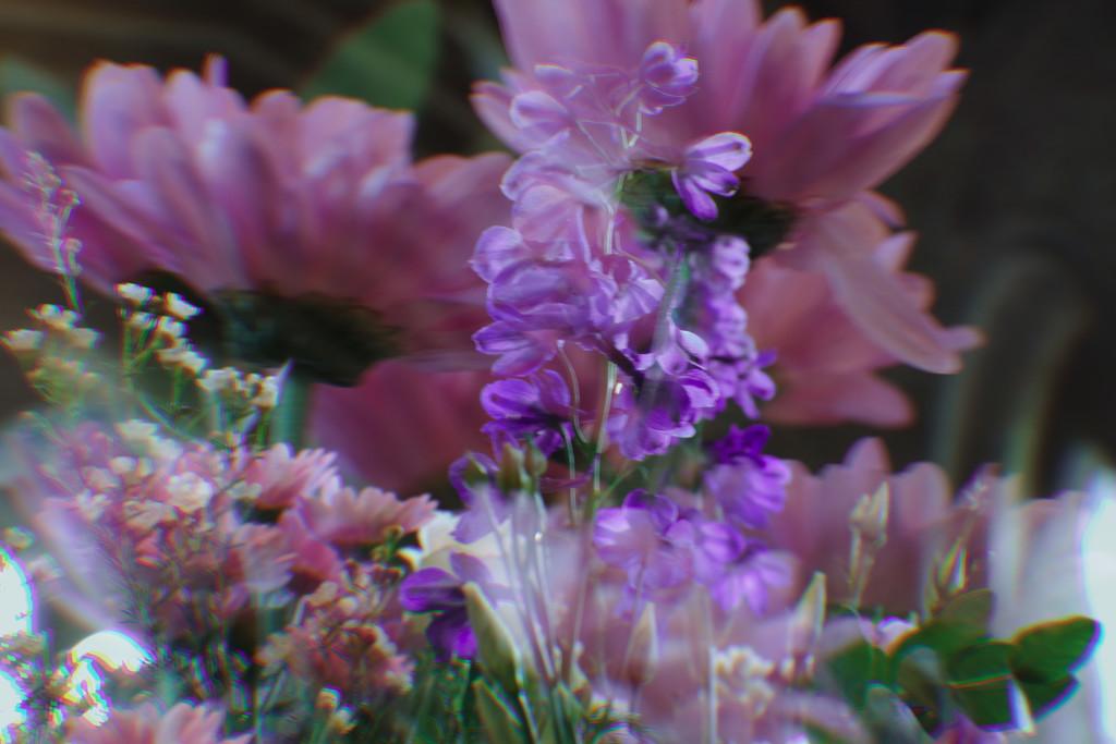 Bosham Church Flowers by 30pics4jackiesdiamond