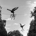 Acrobatic Art in the Park