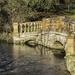 Bridge by the lake