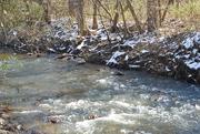 20th Nov 2019 - nearby creek