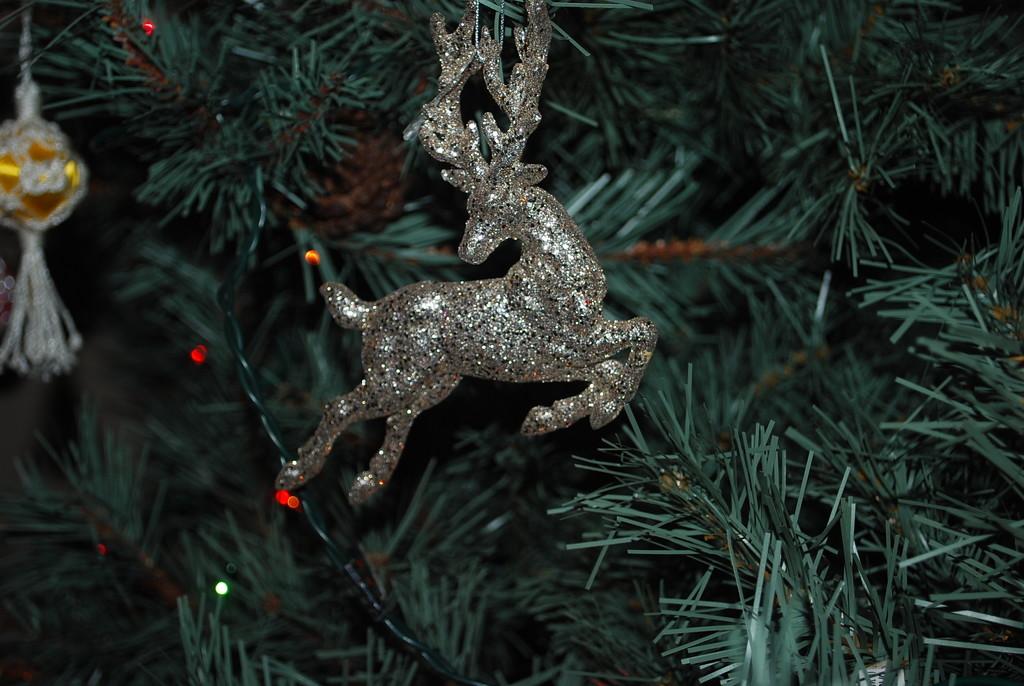 reindeer prancing by stillmoments33