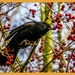 Blackbird And Berries