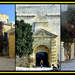 MDINA - ALWAYS A FAVOURITE by sangwann