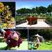 Hospice Garden Festival...
