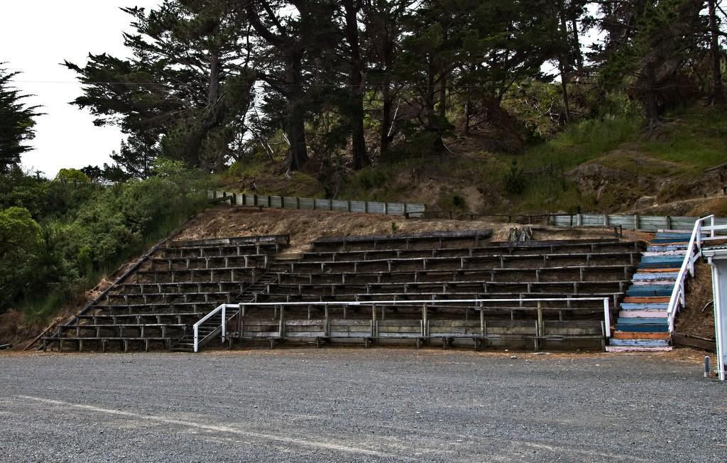 Old Grandstand by kiwinanna