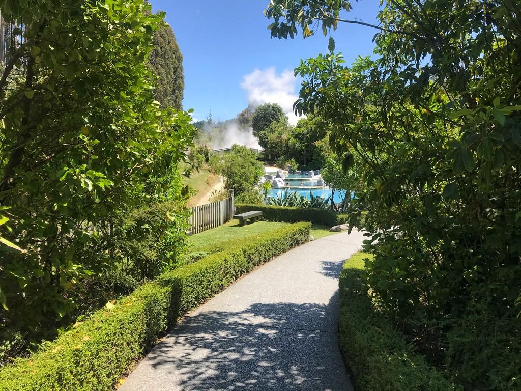 Wairakei Terraces by happypat