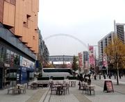 22nd Nov 2019 - Wembley